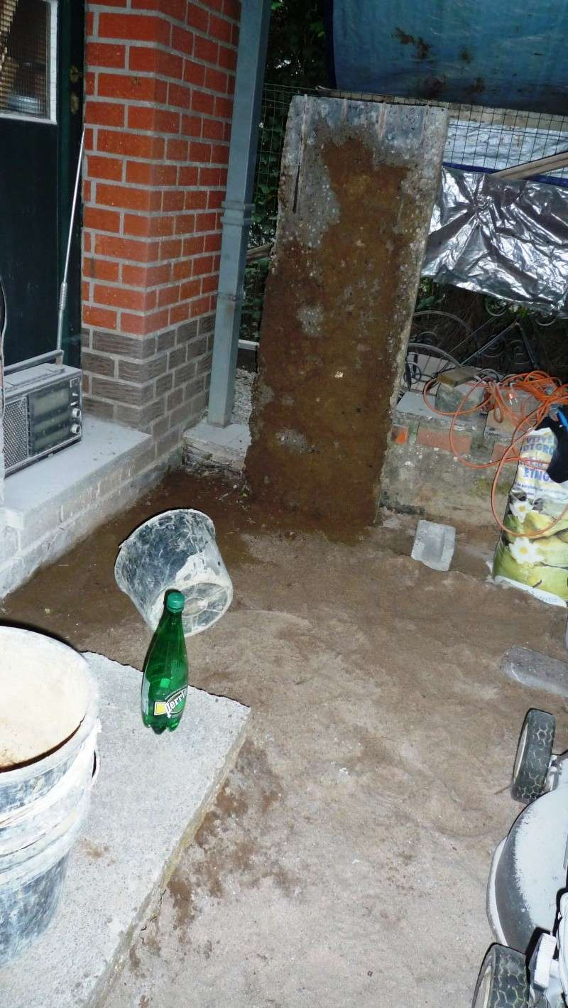 Abri de jardin/Annexe atelier - Page 2 P1010916