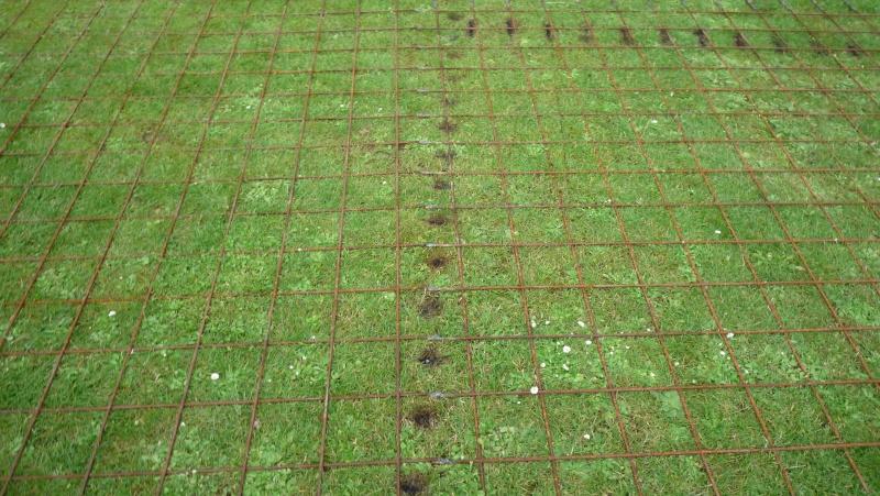 Abri de jardin/Annexe atelier P1010923