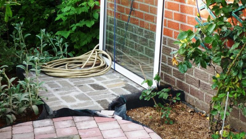 Abri de jardin/Annexe atelier P1020612