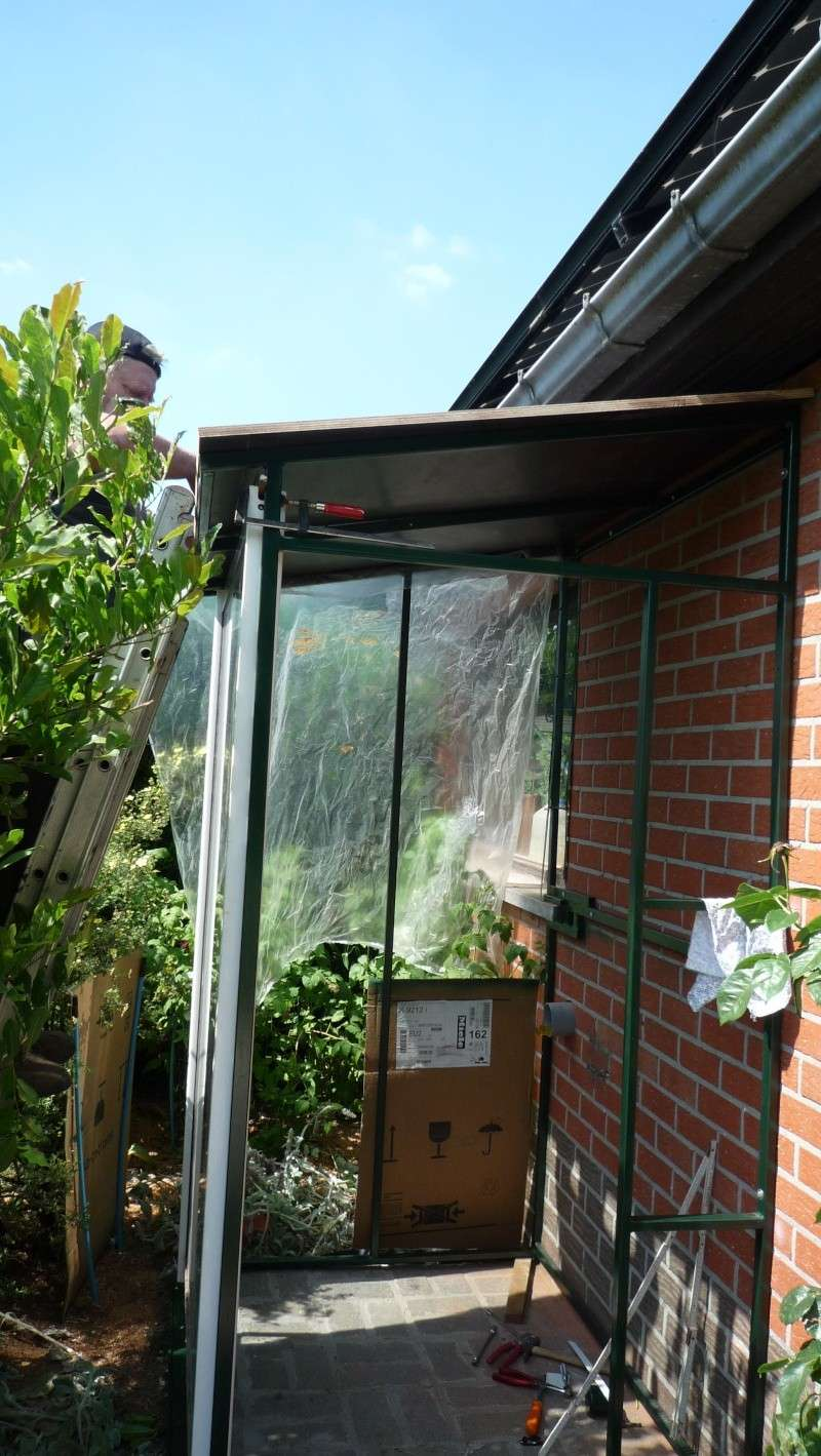 Abri de jardin/Annexe atelier - Page 2 P1020866