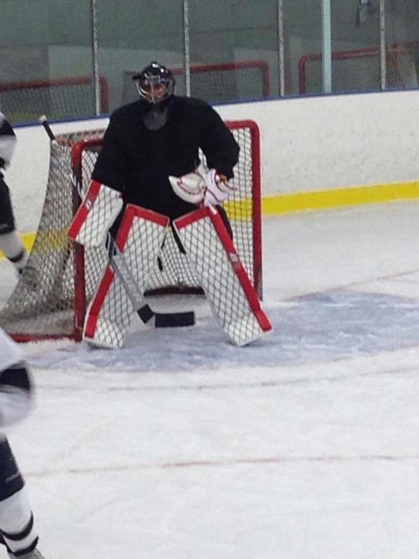 Vidéos Divers sur le Hockey - Page 2 Hockey10