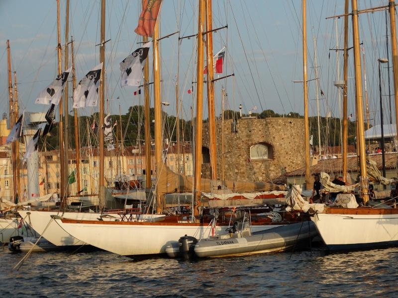 Les voiles de St Tropez Dsc01513