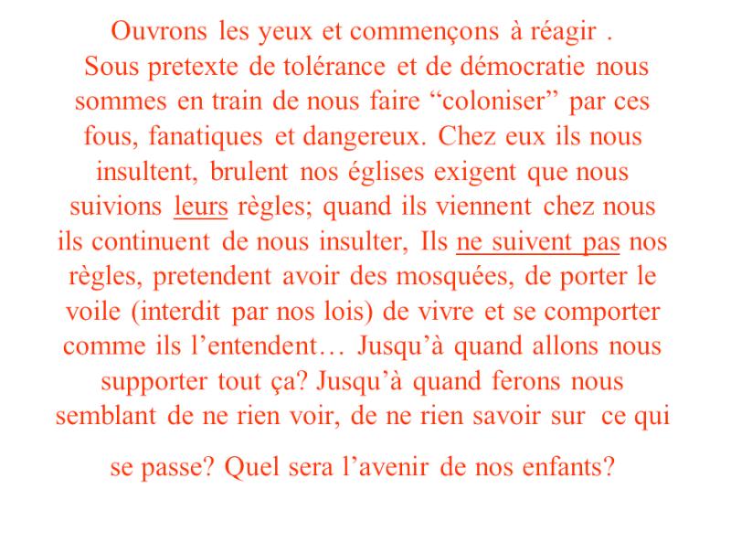 Cellules dormantes de djihadistes en France  2014-031