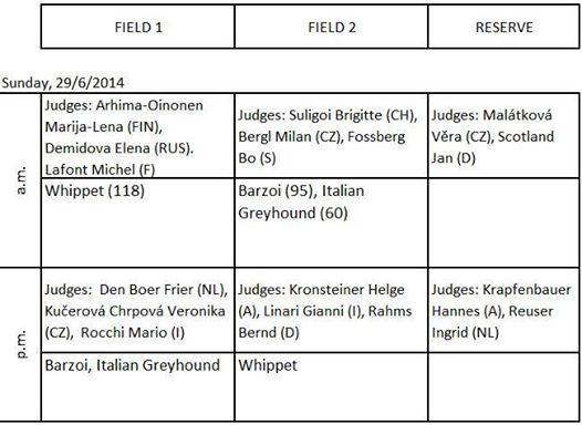 Championnat d'Europe de coursing 27/28/29 juin 14 à Lavarone 10413410