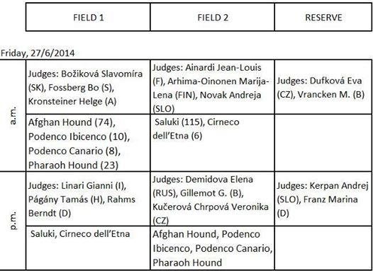 Championnat d'Europe de coursing 27/28/29 juin 14 à Lavarone 10426610