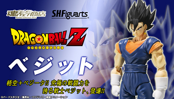 Figuarts Dragon Ball Z (Bandai) - Page 3 Bnr_sh10
