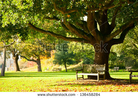 Images Automne Stock-10