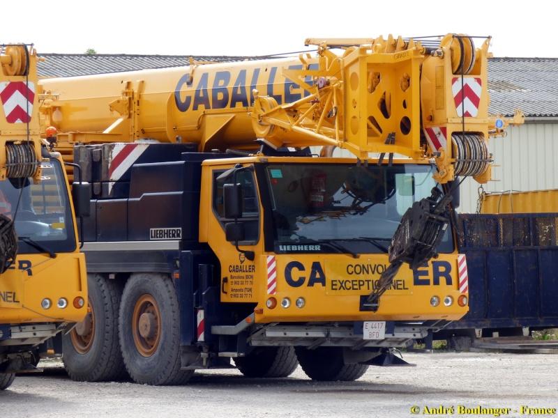Les grues de CABALLER (Espagne) Caball15