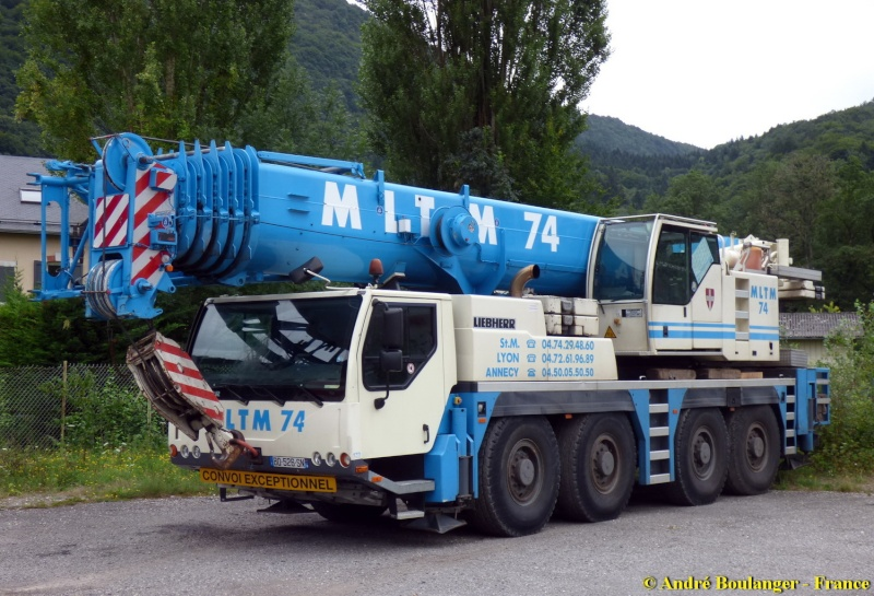Les grues de MLTM (France) Liebh102