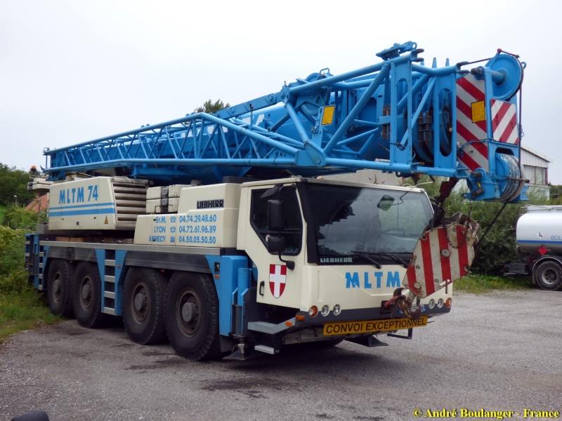 Les grues de MLTM (France) Liebh103