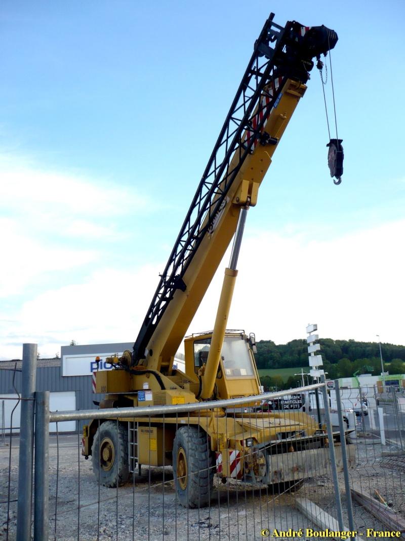 Les grues de DELUCINGE (France) Locate10