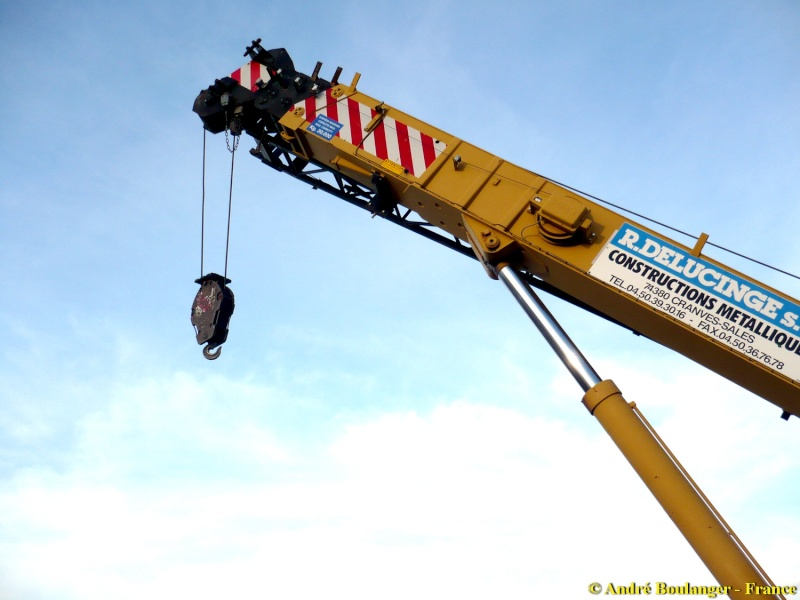 Les grues de DELUCINGE (France) Locate17