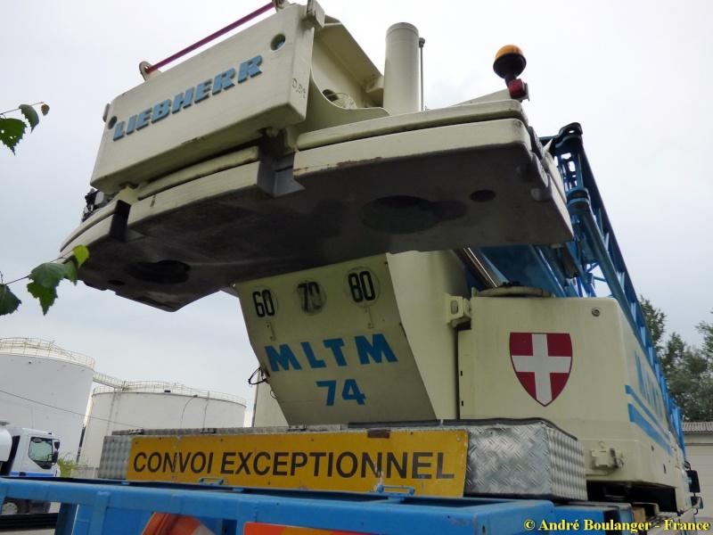 Les grues de MLTM (France) P1010610