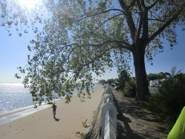 ma semaine sur l' ile D' Oléron  Cimg6918