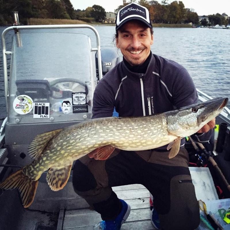 Zlatan à la pêche Zlatan10