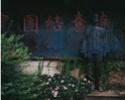 Les trompe-l'œil trompent-ils l'œil ou ouvrent-ils l'esprit - Page 3 Liu_bo12