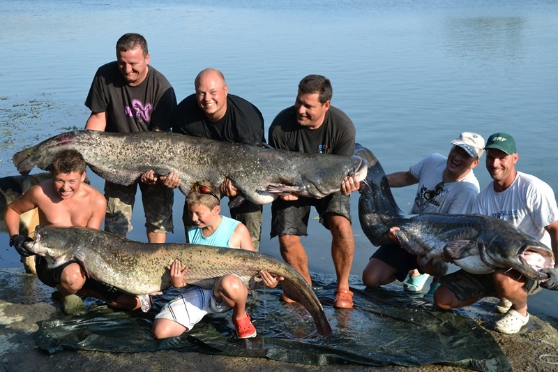 Retrouvailles Estivales et Big Fishs !!! Dsc_1411