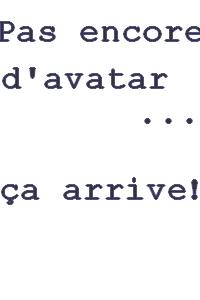 Modèle de la fiche de présentation  Avatar11