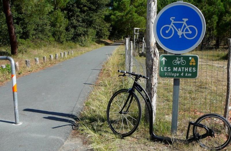 Présentation :  Loïc un petit nouveau en Charente-Maritime P1020910