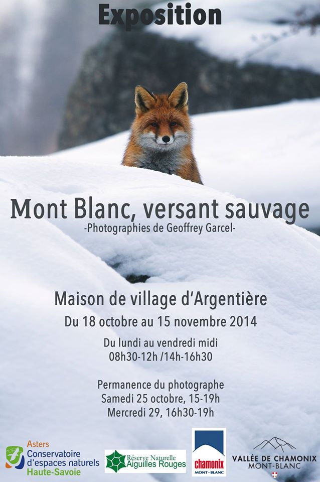 Annimations automne 2014 Aaa11