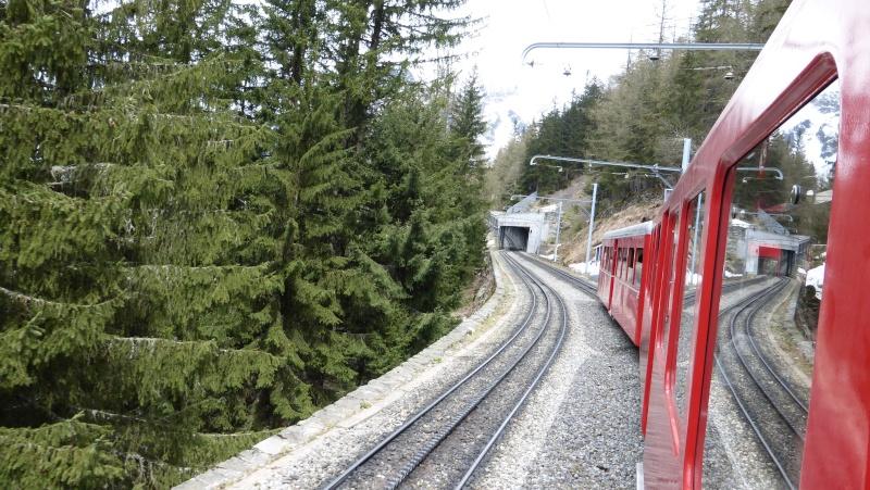 Photos train du Montenvers P1000410