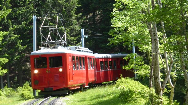Photos train du Montenvers P1000610
