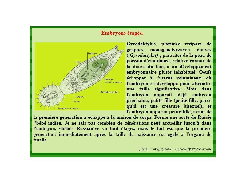 Tout sur les vers de peau Embryo10