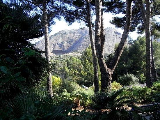 (13) Le Parc du Mugel et son jardin exotique - La Ciotat - Page 3 Fin_ju10