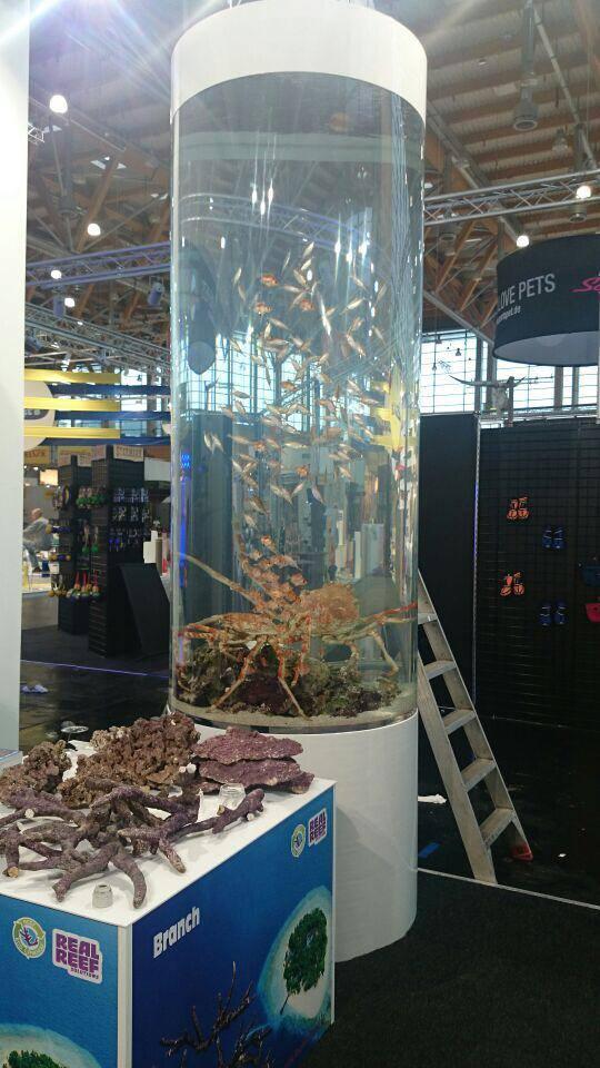 Interzoo 2014 & The Sea Farm 10099910