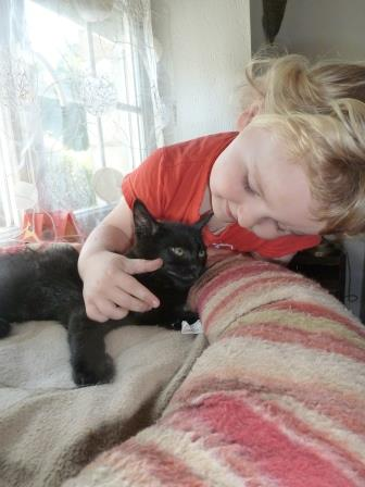 Jack, chaton mâle noir né le 19/04/2014 01112