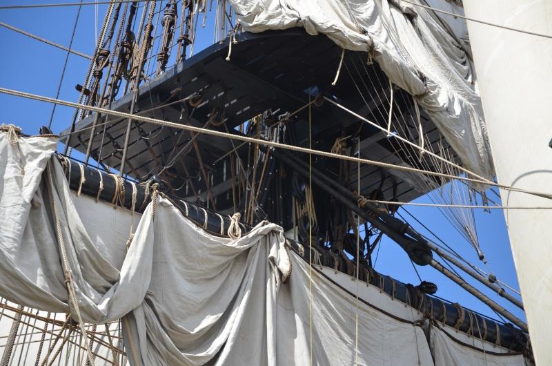 Reconstruction du navire de La Fayette . - Page 9 Dsc_5011