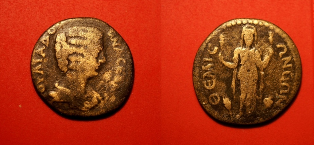 Quelques monnaies provinciales de ma collection  Julia_10