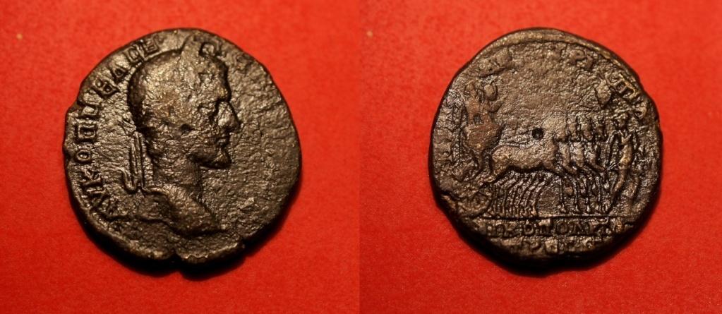 Quelques monnaies provinciales de ma collection  Macrin10