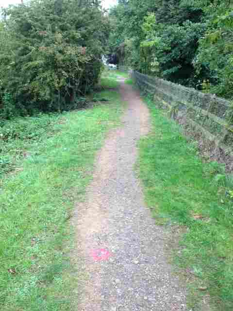 A cycle & walkway Photo_56