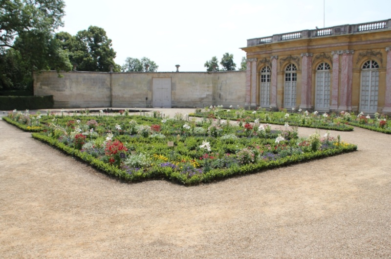 Exposition Fleurs du Roi au grand trianon 910