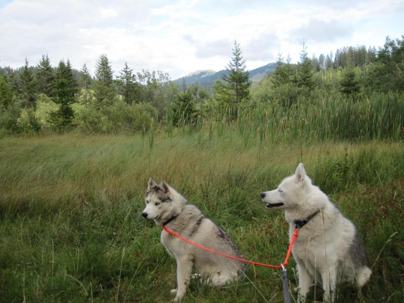 Saskia et Jiro, suite Tourbi11