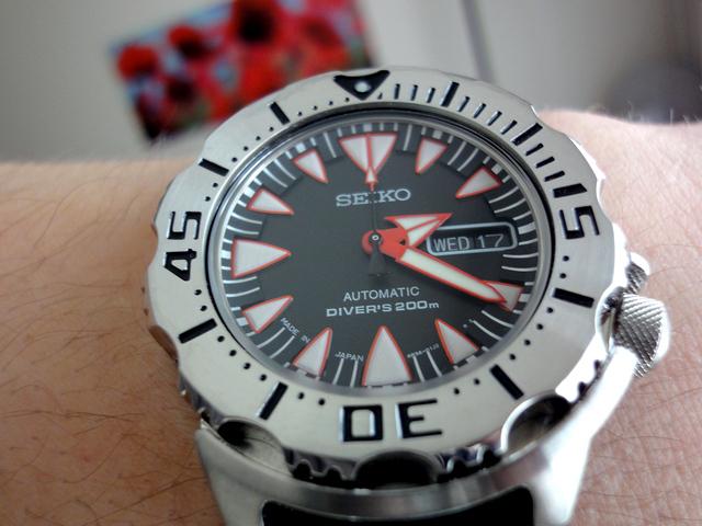 Un bilan horloger 2014 ? Dsc03710