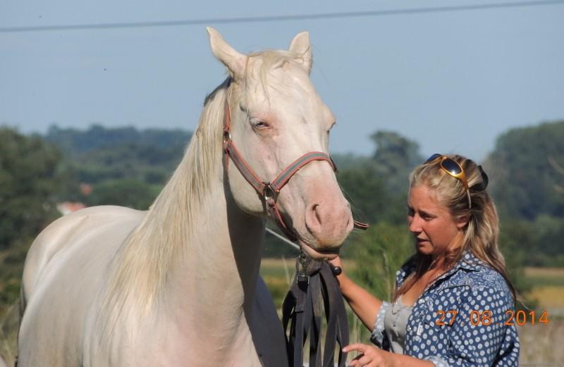 Les chevaux de l'Appaloosa IJ Farm - Page 3 Glitte53