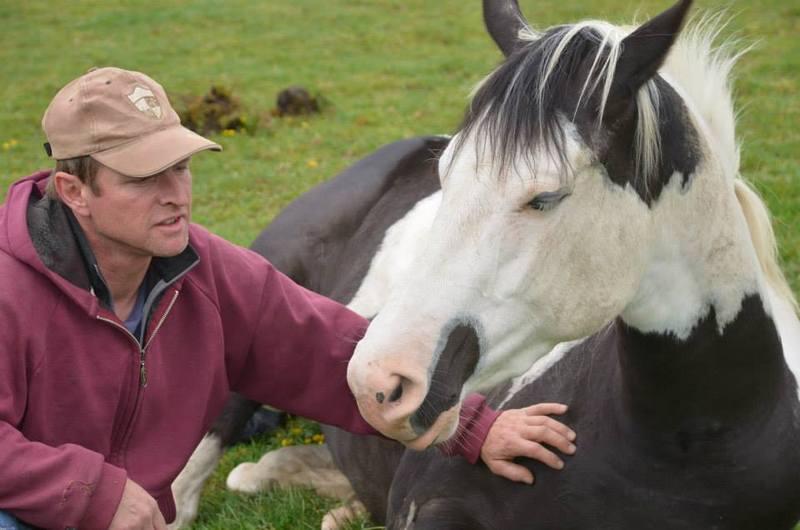 Les chevaux de l'Appaloosa IJ Farm - Page 4 Liz_2710