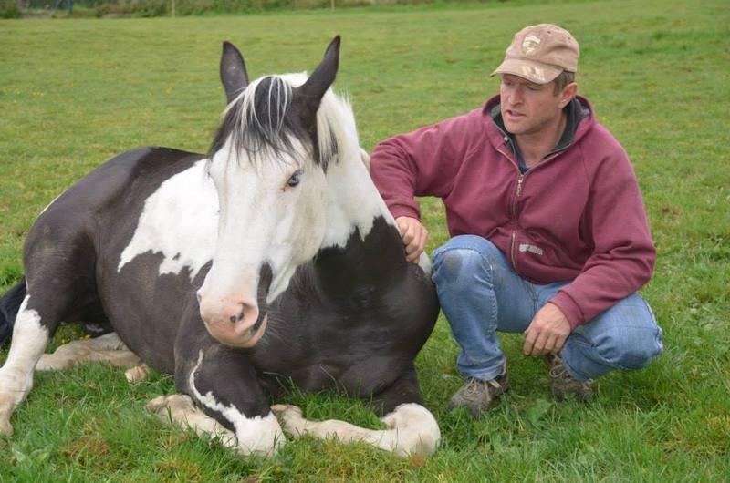 Les chevaux de l'Appaloosa IJ Farm - Page 4 Liz_2910