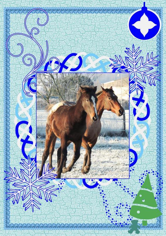 Nos dadous fêtent Noël Montag11