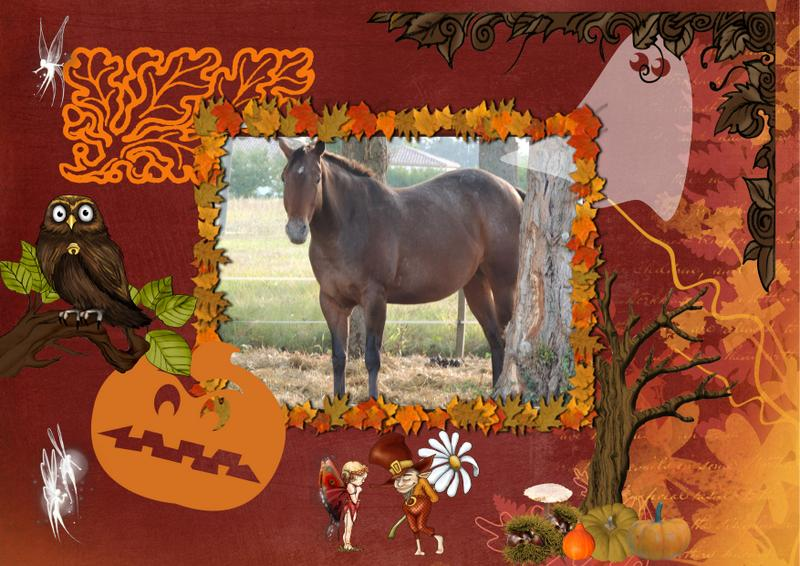 CONCOURS PHOTOS : Halloween chez les chevaux Uppy_h10