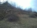 foto dal bosco, i nostri mezzi all'opera - Pagina 3 Foto0010