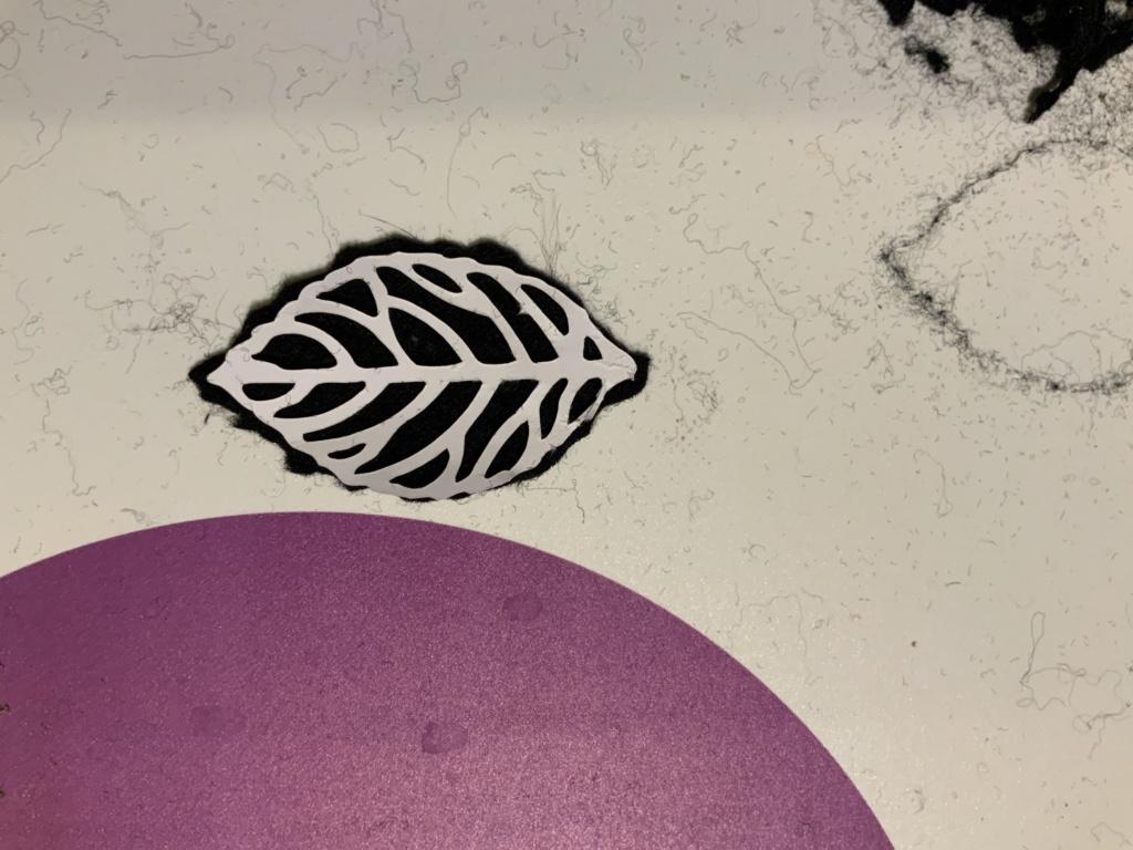 Caméo 4 - Outil lame rotative Img_0011