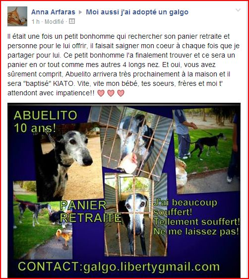 Abuelito 9 ans  – ADOPTE !!! - Page 6 Forum_12