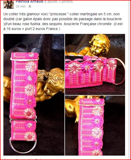 TOMBOLA pour les mastins ! 2 euros/ticket et de superbes lots ! Hera_l14