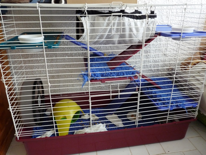 Vend grande cage super pet [91/idf] P1130012