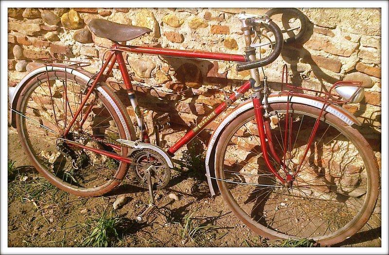 Cycle Gazelle Gazell10
