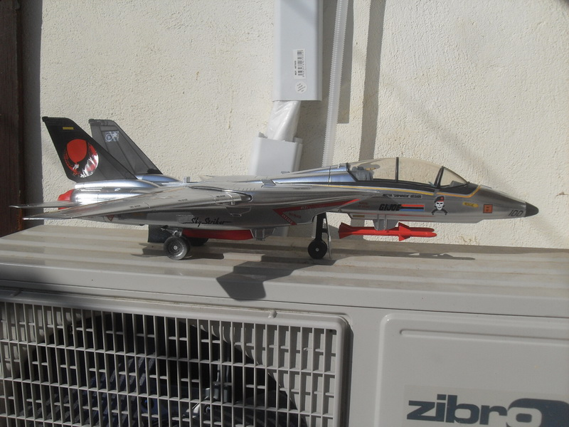 Skystriker Sky Patrol version by David Sdc11012