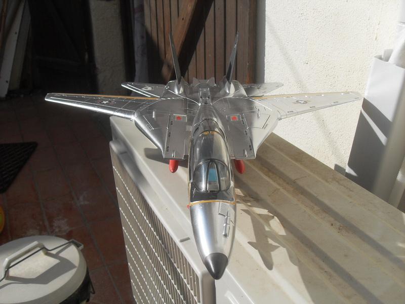 Skystriker Sky Patrol version by David Sdc11017